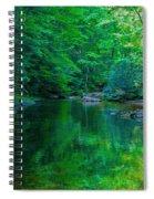 Otter Creek Reflection  Spiral Notebook