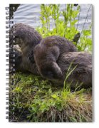 Otter Family Fun Spiral Notebook