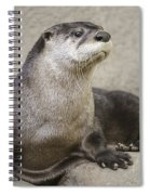 Otter North American  Spiral Notebook