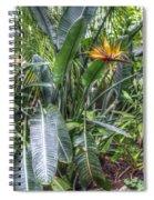 Otts Waterfall Room   Schwenksville Pennsylvania Usa Spiral Notebook