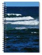 Our Beautiful Ocean 2 Spiral Notebook