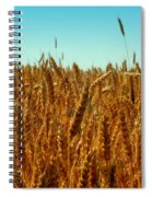 Our Daily Bread Spiral Notebook
