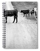 Our Way Or The Highway Bw Spiral Notebook