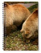 Out Of Hibernation Spiral Notebook