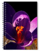 Out Of The Black Spiral Notebook
