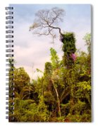 Out Of The Jungle Spiral Notebook