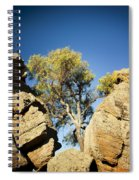Outback Tree Spiral Notebook