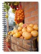 Outdoor Fruit Juice Stall  Spiral Notebook