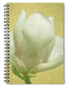 Outer Magnolia Spiral Notebook