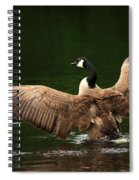 Outstretched Wings Spiral Notebook