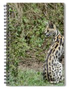 Over Theshoulder Spiral Notebook