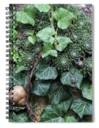 Overgrown Wall With Snail Spiral Notebook