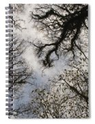 Overhead Trees In Exmoor, United Kingdom Spiral Notebook