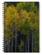 Overseers Spiral Notebook