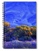 Owens Valley Fall Colors  Spiral Notebook