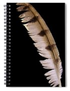 Owl Feather Spiral Notebook