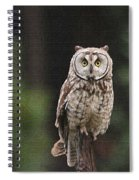Owl In The Forest Visits Spiral Notebook