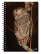 owl of Madagascar Spiral Notebook
