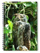 Owl Portrait 2 Spiral Notebook