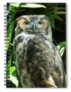 Owl Portrait Spiral Notebook