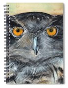 Owl Series - Owl 1 Spiral Notebook