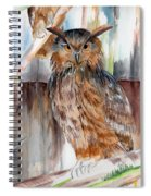 Owl Series - Owl 2 Spiral Notebook