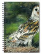Owl Series - Owl 3 Spiral Notebook