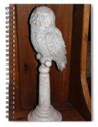 Owl Statue Spiral Notebook