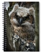 Owlet On The Watch Spiral Notebook
