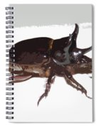 Ox Beetle Abstract Spiral Notebook