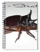 Ox Beetle Spiral Notebook