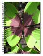Oxalis Deppei Named Iron Cross Spiral Notebook
