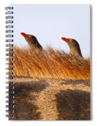 Oxpeckers Spiral Notebook