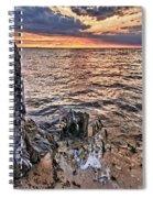Oyster Bay Stump Sunset Spiral Notebook