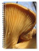 Oyster Mushroom Macro Spiral Notebook