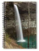 Ozone Falls II Spiral Notebook