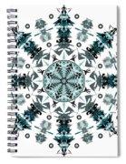 P2 Mandala Spiral Notebook