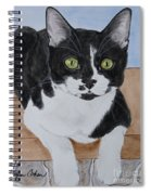Pablo The Cat Spiral Notebook