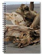 Pacific Driftwood II Spiral Notebook