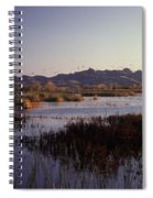 Pacific Flyway Spiral Notebook
