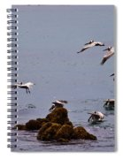 Pacific Landing Spiral Notebook
