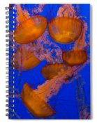 Pacific Sea Nettle Cluster 2 Spiral Notebook