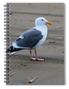 Pacific Seagull Spiral Notebook