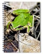 Pacific Tree Frog 2a Spiral Notebook