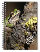 Pacific Treefrog Spiral Notebook
