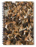 Pack Of Hound Dogs Spiral Notebook