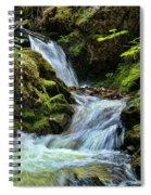 Packer Falls Vert 1 Spiral Notebook