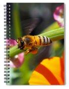 Packin Poppy Pollen Spiral Notebook