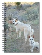 Paco And Mocha Spiral Notebook