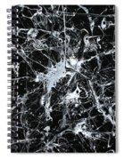 Paint #56 Spiral Notebook